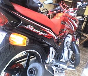 BIG D RED DEVIL SCORPIO